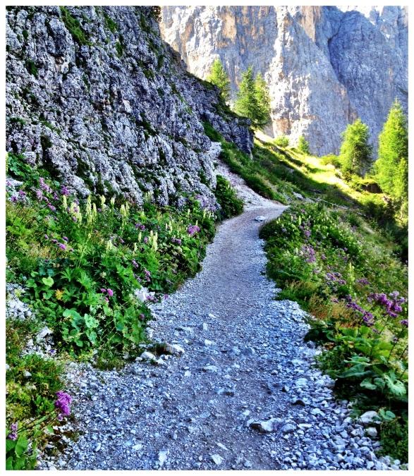 Dolomites Path